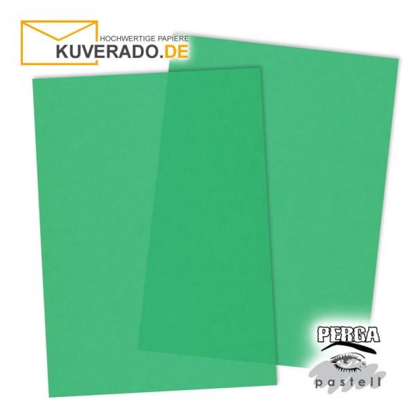 Artoz transparentes Briefpapier tannengrün DIN A4