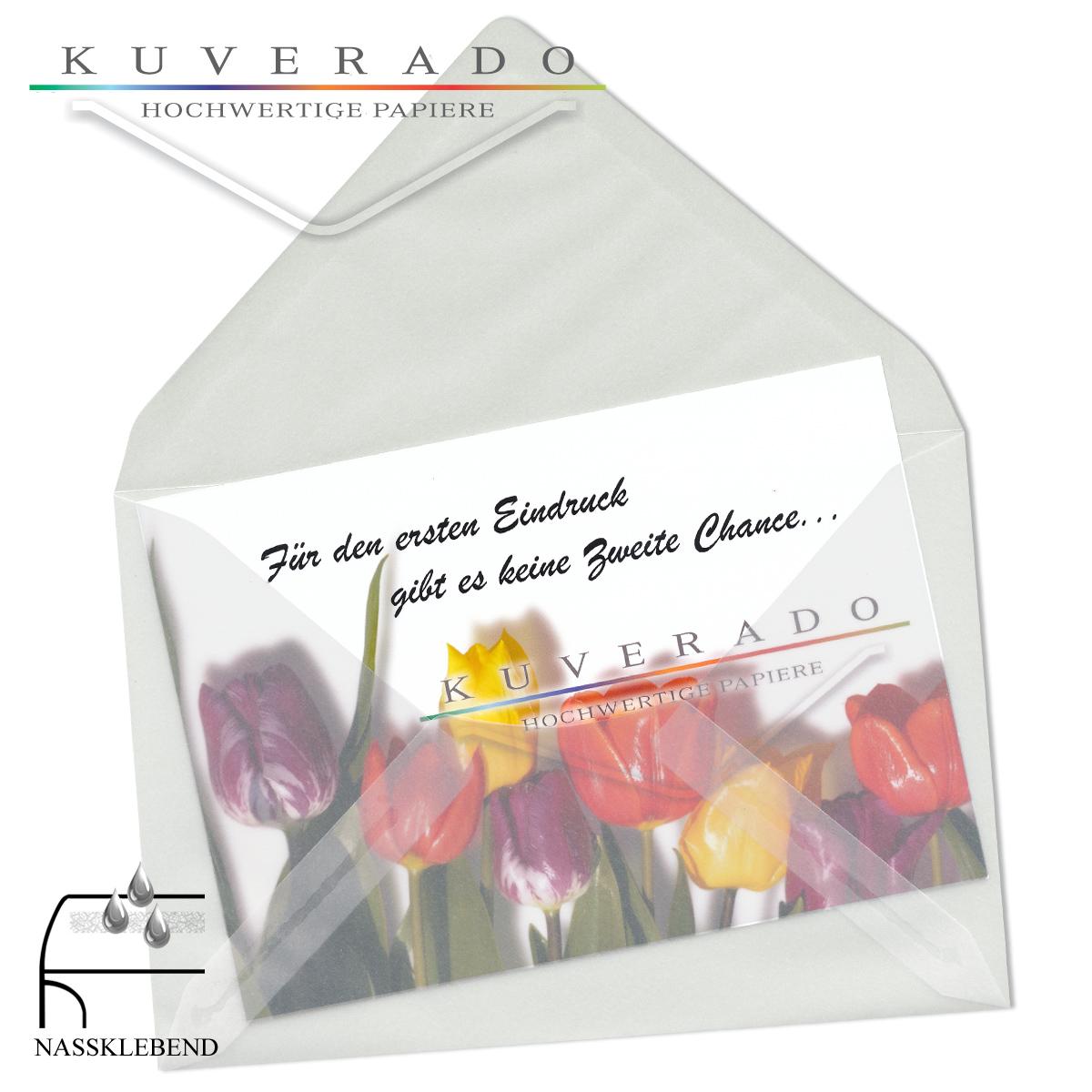 Transparente Visitenkartenhüllen In Klar Milchig 62x98 Mm